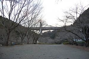 20080207dsc_0086